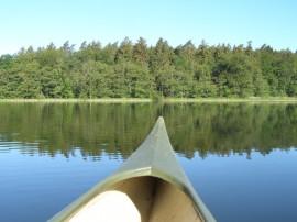 Kanu auf dem See mit Wald im Hintergrund