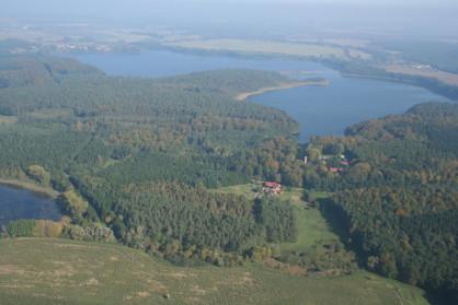 Blick auf Wald und See aus der Vogelperspektive