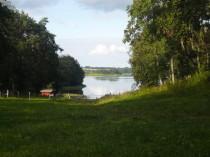 Blick auf Wald und See vom Schloss aus