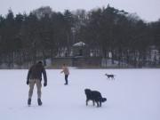 Schnee auf dem zugefrorenen See