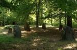 Steinkreis im Wald von Boitin