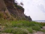 STeilküste auf der Insel Poel